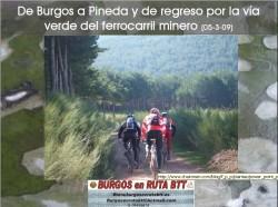 burgos-pineda-de-la-sierra